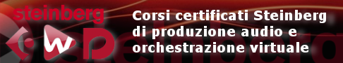 Corsi certificati Steinberg a Cremona